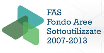 FAS 2007 2013